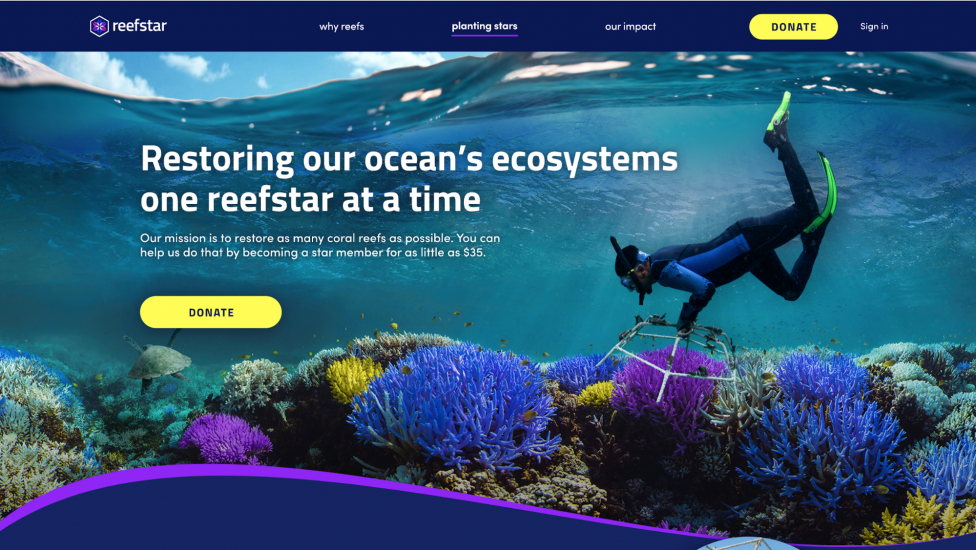 Homepage for the Reefstar project by Ironhack Miami for Adobe Creative Jams.